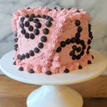 Chocolate-Chili Layer Cake with Raspberry Cream Cheese Frosting (vegan & plant-based)